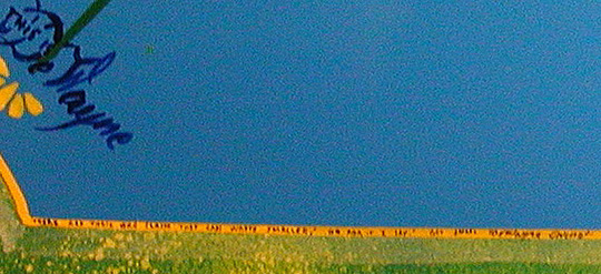 #24B DeWayne Connot 'Quasi' - North Wales, Pennsylvania, September 1995 'THE SMALLEST WRITING', This is a close-up of DeWayne's 1st of 2 Panels.